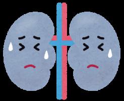 むくみの原因となる腎臓病-イメージ