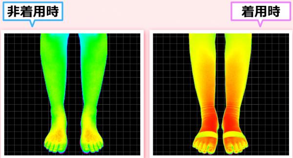 エクスレッグスリマーの脂肪燃焼効果-画像