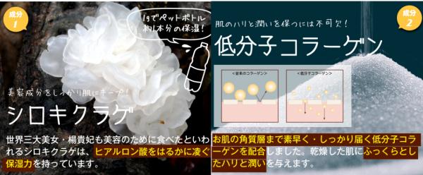 ルフィーナ-保湿成分と効果-画像