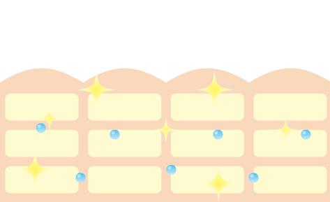 ウルフラビハダのウルボノイドウォーターの保湿効果-画像