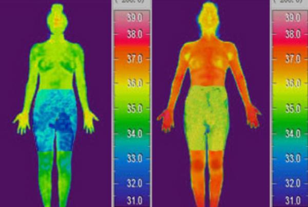 セルキューンの脂肪燃焼効果-画像