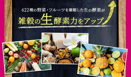 ベルタこうじ生酵素の成分-野菜と果物-画像