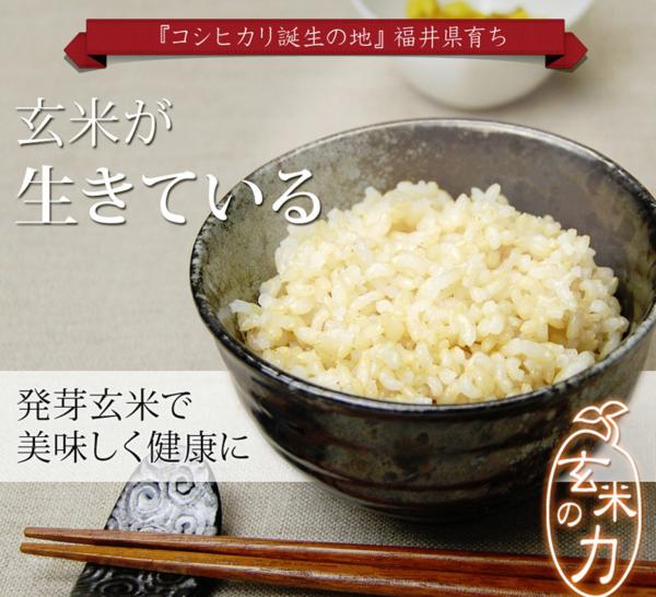 発芽玄米-イメージ